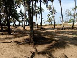 Beach Vadanappally 45 cent,owner direct,1.80 lakhs/cent(negotiable)