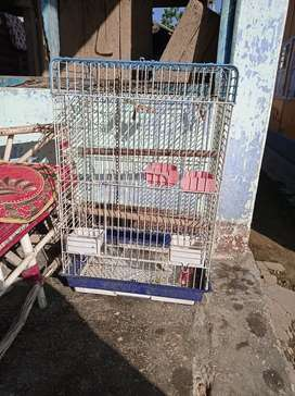 Bird cage urgent sell