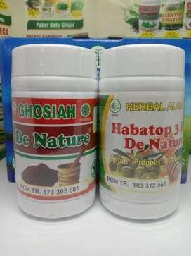 Obat Tipes Tifus Obat Demam Tifoid De Nature