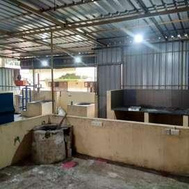 800sqft godown facility 600sqft shop