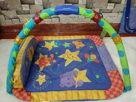 Carter's play gym