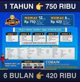 Spesial hari ini Transvision HD resmi Lombok Timur pket setahun Rp750k