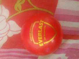 Sg everlast synthetic dues ball