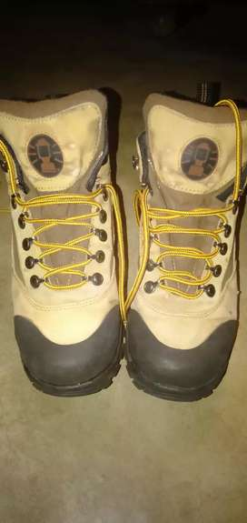 Coleman hiking shoes