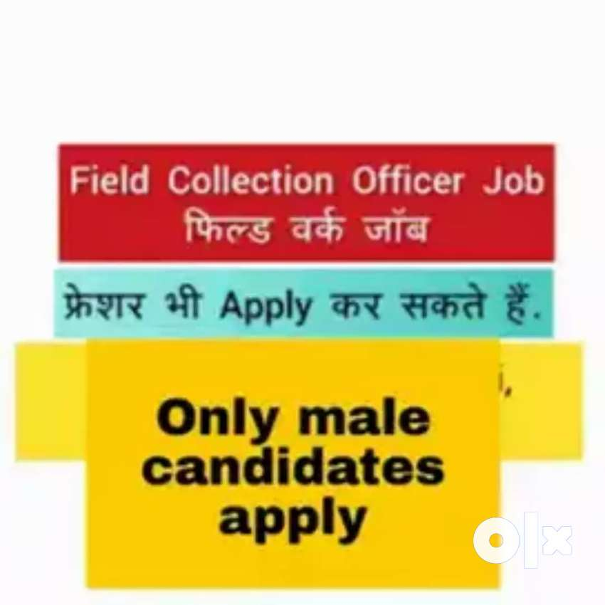 Collection officer post for field work 0