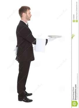 Waiter/Stewer