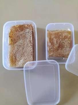 Sarang Madu Asli 250 gram
