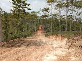 Area Perkebunan lokasi ciamik Sukabumi