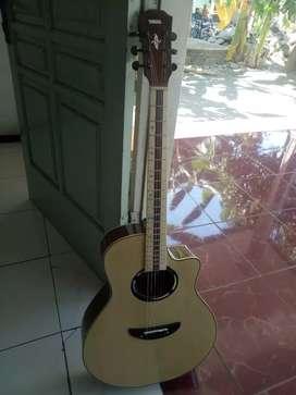 Guitar baru bonus tas