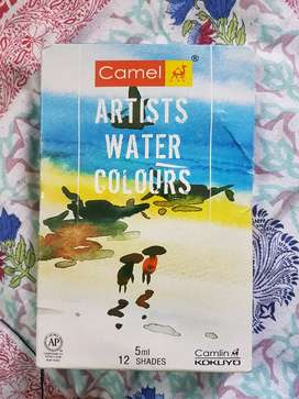 Artist Water Colours