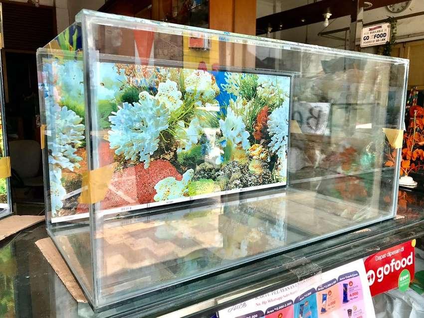 Aquarium ready 60x30x30 plus background 0