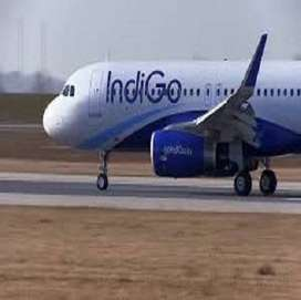 Satara - Indigo Airlines / All India Vacancy opened in Indigo Airlines