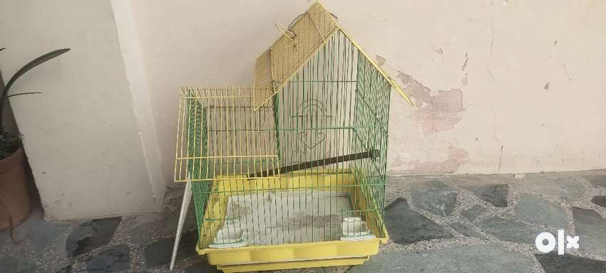 Pinjra in good condition 0