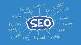 Professional SEO Expert Needed in Sect 65 Gurgaon