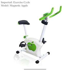 Exercise Cycle, Gym Workout Bike, Take charge, don't be expansive.