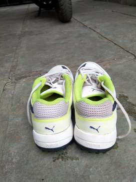 New puma original (size:-7) spikes...just used 2 times ...