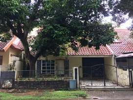 Rumah standard Anggrek Loka BSD