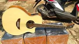 Gitar apx tanbes akustik elektrik