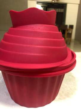 Silicon baking mould