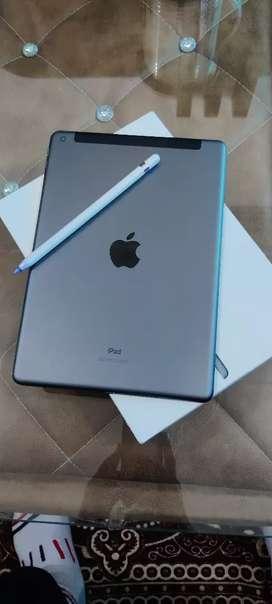 iPad (8th generation) wi-fi+cellular