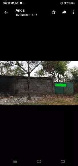 Tanah langgar lontar di jual rest sambikerep