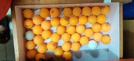 50 Table Tennis Balls of Stag 3 star, 1star , GKI Euro Star