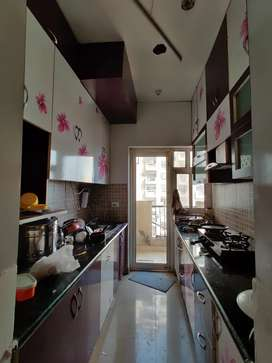 1BHK on rent for *FEMALE* in Hyde Park, rent is Rs 10k