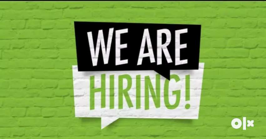 We are looking for Sales Manager, Sales Executive, Team head 0
