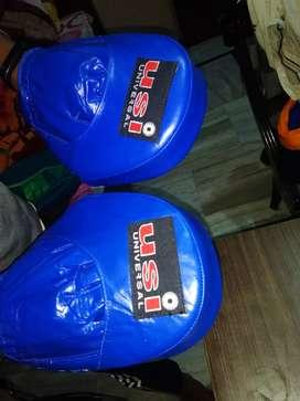 Karate/Boxing focus pads