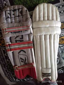 CRICKET PAD RbK
