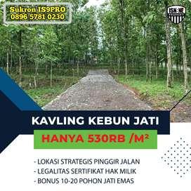 Jual Tanah Kavling Murah di Bogor Masuk Mobil Row Jalan Lebar