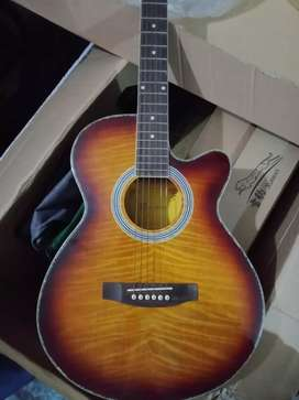 New Box pack Rogers semi accoustic guitar