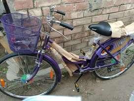 BSA NEW CYCLE