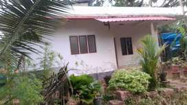 I want cell my 3 yrs old home 98951o3859 WhatsApp msg me