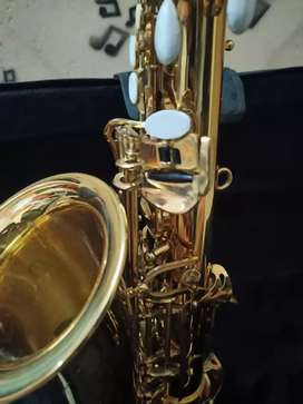 Alto saxophone Havana 1 month old not used