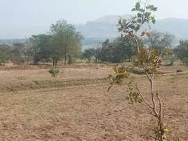 Dam view attached general land for sale in palghar