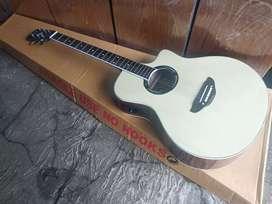 Gitar akustik elektrik new apx nwtural