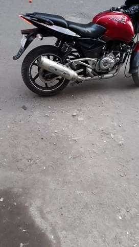 220 cc pulser