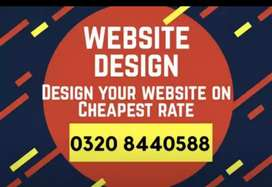 Professional Web Development for your any business on less price