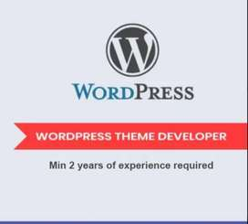 WordPress Developer Required