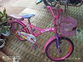 Sepeda anak merk family 20 inch