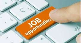 Argent Require  Boy /Girls For Office work Fresher /Experience
