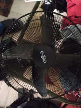Euro Asia  large fan  black color