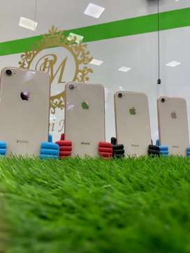 Iphone 8 64gb Gold Pta Approved
