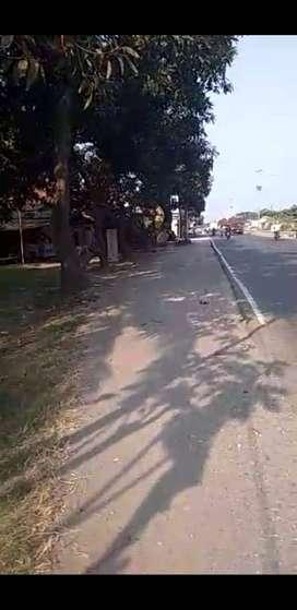 Dijual Murah Tanah Strategis 1520m2 Pinggir Jalan Raya Pantura Subang
