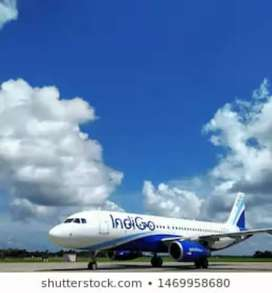 We are opening for ground staff in indigo airlines