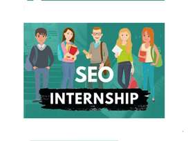 SEO Internship Available for Male/Female