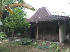 Rumah Joglo dan limasan rumah kampung jawa original / modif kayu jati