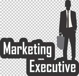 Marketing jobs only companies dealings collect orders and payments