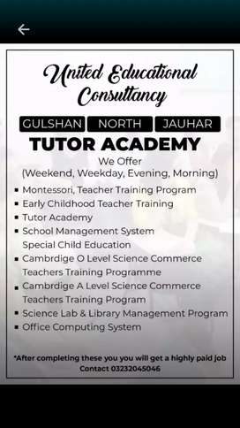 Lady home tutor required
